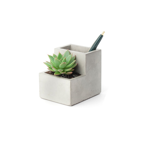 "Concrete Desktop Planter ""S"""